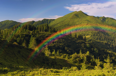 rainbow scene: Mountain landscape with a rainbow. Fir forest Stock Photo
