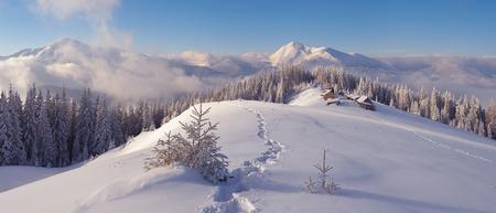 winter park: Christmas landscape. Winter in the mountains. Mountain village. Carpathians, Ukraine, Europe