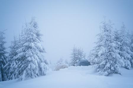 estado del tiempo: Tienda turística en el bosque de invierno. alza severa en tiempo frío. Cárpatos, Ucrania, Europa. tonificación del color Foto de archivo