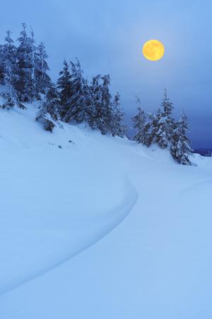 noche y luna: Paisaje de invierno por la noche. Luna Llena sobre un bosque de montaña. Belleza en la naturaleza
