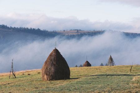 art processing: Rural landscape in autumn. Stack dry hay in the field in the mountains. Sunny morning with beautiful fog. Karpaty, Ukraine, Europe. Art processing of photos. Color toning and low contrast Stock Photo