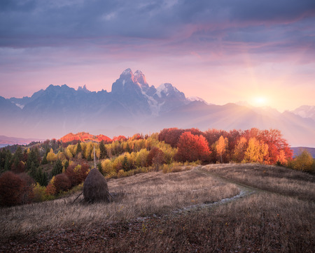 art processing: Autumn landscape in mountains. Deciduous forest in hills. Stack dry hay in meadow. Rural view from footpath. Beautiful sunset. Art processing of photos. Low contrast, color toning, soft focus effect