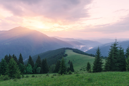 art processing: Colorful sunset in the mountains. Summer landscape with fir forest and mountain peaks. Karpaty, Ukraine, Europe. Art processing of photos. Color toning cold colors, low contrast, soft light Stock Photo