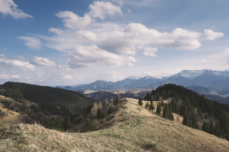 art processing: Spring landscape in the mountains. The forest on the hillsides. Sunny weather with cumulus clouds. Karpaty, Ukraine, Europe. Art processing of photos. Lowered contrast, color toning