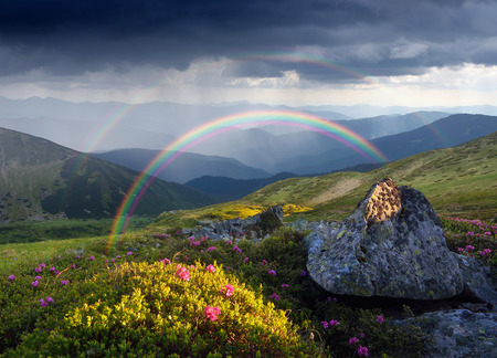 art processing: Mountain landscape with a rainbow over flowers.  Collage of two frames. Art processing photos