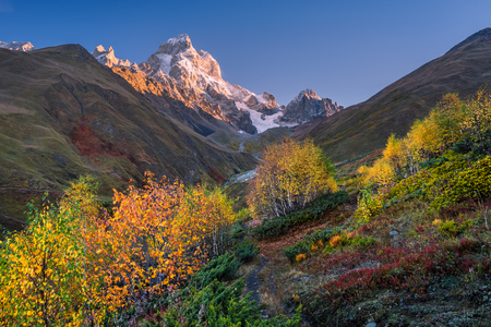 art processing: Autumn landscape. Path in the mountains. Mount Ushba, Main Caucasian ridge. Zemo Svaneti, Georgia. Art processing of photos. Color toning