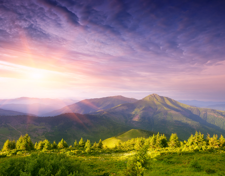 art processing: Wonderful sunrise in the mountains. Summer landscape with a fir forest and a beautiful top. Art processing of photos. Color toning. Collage of two frames Stock Photo