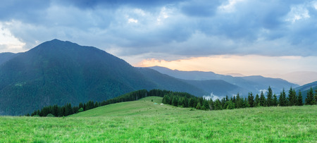 art processing: Sunset in the mountains. Summer landscape with fir forest and mountain peaks. Carpathians, Ukraine, Europe. Art processing of photos. Color toning