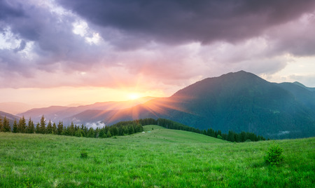 art processing: Wonderful sunrise in the mountains. Summer landscape with a fir forest and a beautiful top. Art processing of photos. Color toning