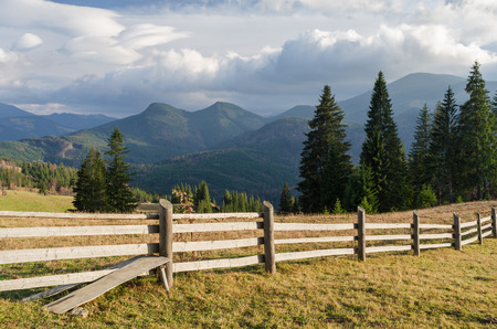 beautiful weather: Wooden fence in a mountain village. Summer landscape with beautiful clouds and spruce forest on the slope. Sunny weather. Carpathians, Ukraine, Europe