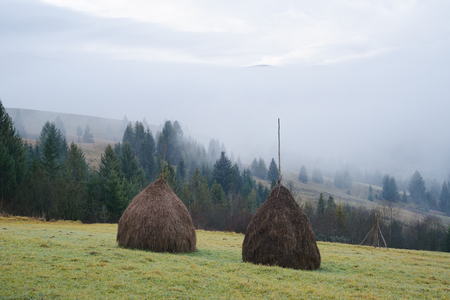 rick: Hills in the mountain village. Rick dry hay. Morning fog