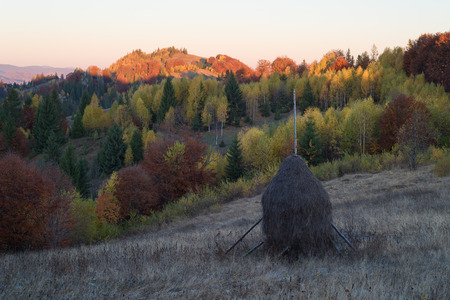 beautiful weather: Autumn landscape with a haystack on the meadow. Beautiful deciduous forest on the hills. Sunny weather in the morning. Carpathians, Ukraine, Europe