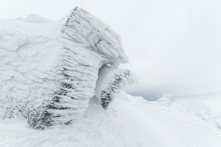 severe weather: Hoarfrost on a rock in the mountains. Winter landscape a cloudy day. Severe weather Stock Photo
