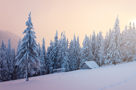 snowdrifts: Winter Landscape with a wooden hut in the mountains. Spruce forest in the snow and fog