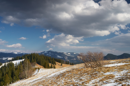 thawed: Spring landscape in the countryside. Glade with thawed snow. Beautiful sky with cumulus clouds Stock Photo