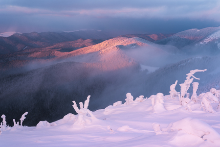 Winter landscape at dawn. Mountain tops in fog and clouds. Very cold morning. Carpathians, Ukraine, Europe