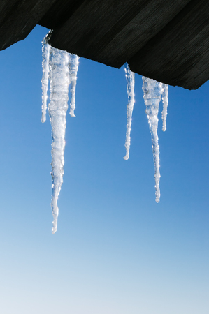 Winter background in blue tones. Icicles against a clear sky