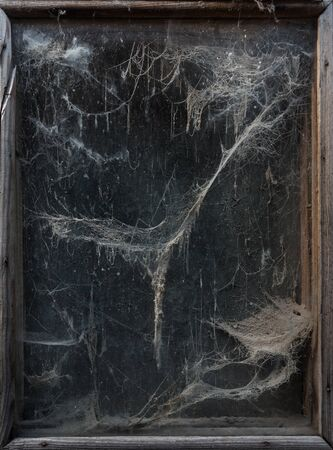 Spooky halloween background. Old and scary web (cobwebs) in a dark window