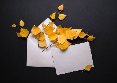 Autumn card with yellow foliage on a black background. Envelope with a white blank sheet of paper. Place for promo or greetings text Stok Fotoğraf