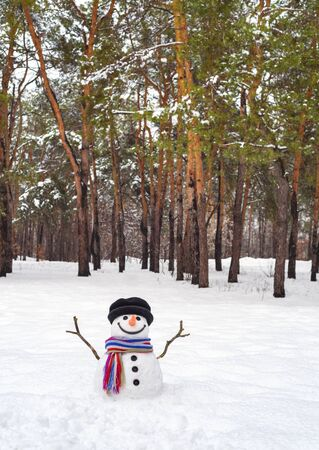 Funny snowman in a pine forest. Winter fun with snow Stok Fotoğraf