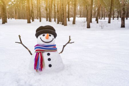 Snowman with a striped scarf in a city park. Winter scene with copy space for text