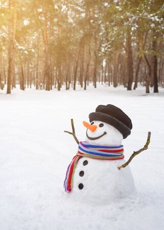 Beautiful snowman in the park. Cheerful winter snow fun for children