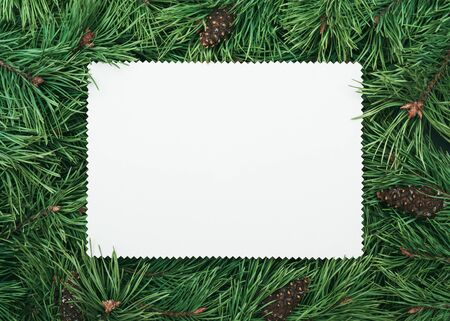 Pine branch frame with white note paper sheet fo text. Christmas and New Year background
