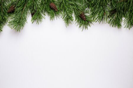 Merry Christmas or New Year white background with pine branch border Stok Fotoğraf