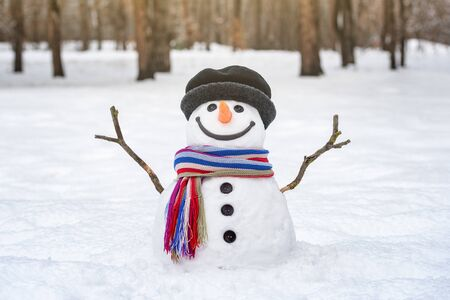 Funny snowman with arms outstretched from branches. Winter in a city park Stok Fotoğraf