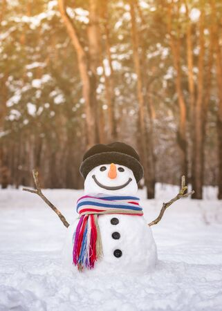Snowman in a snowy city park. Traditional winter fun for children in nature