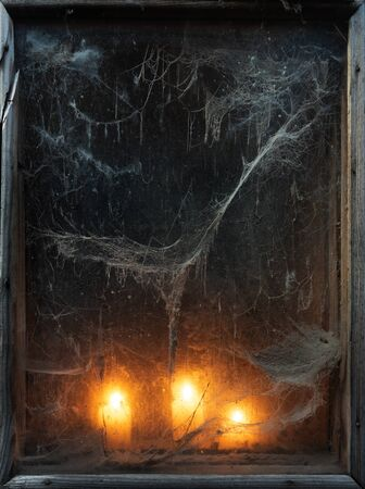 Scary background for the holiday of Halloween. Creepy old spider web in the dark