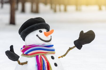 Merry christmas and happy new year greeting card. Snowman with a striped scarf and a beautiful smile