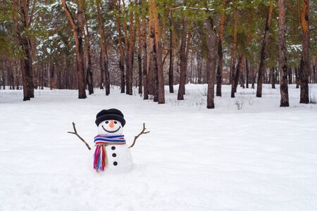 Winter landscape with a snowman in a city park. Snowy meadow near pine trees