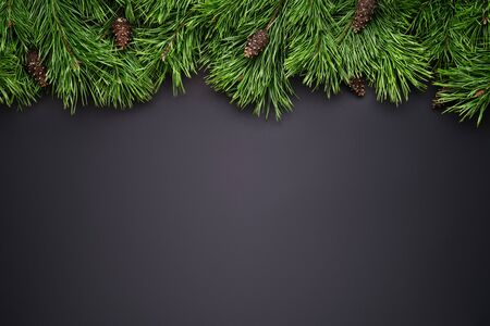Merry Christmas or New Year black background with pine branch border.  Copy space for text Stok Fotoğraf