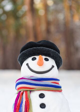 Portrait of a fabulous snowman with a cute smile Stok Fotoğraf