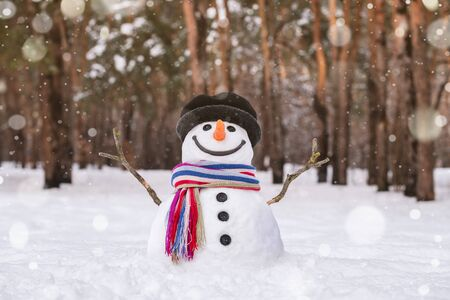 White Christmas is a childrens winter dream. Cute snowman in a city park. Stok Fotoğraf