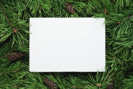 Christmas frame with green fir branches and a white paper sheet. Copy space for text