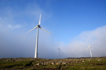 Wind farm in the fog. Renewable electricity Archivio Fotografico