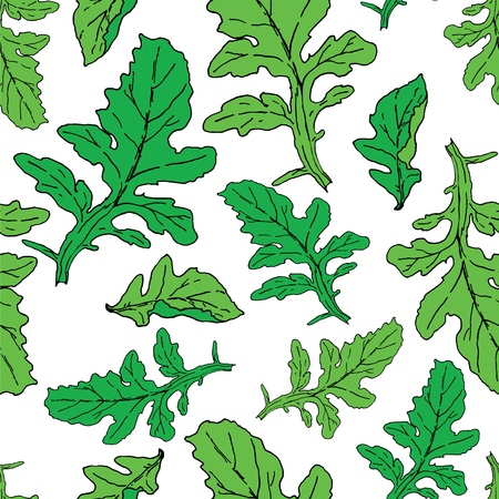 Green fresh leaves of rocket salad surface pattern. Hand drawn for meny design, packaging, book illustrations