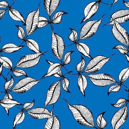 Vector seamless outline leaves pattern. Black ink engraved on blue background. Trendy elegant design concept for fashion textile print.