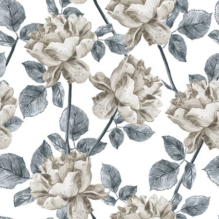 Vintage floral seamless pattern with hand drawn garden roses. Elegant grey and sepia tones design with leaves and flowers on white background 스톡 콘텐츠