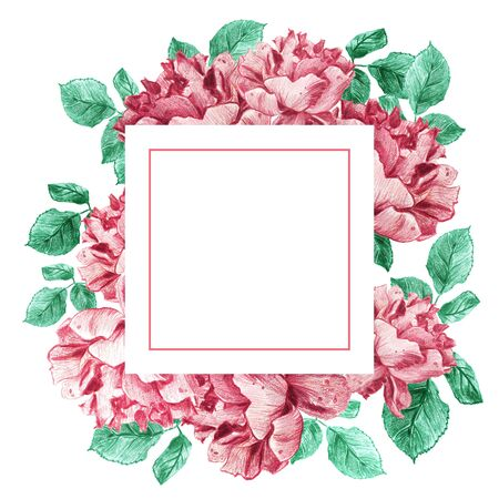 Decorative square frame of pink garden roses with green leaves. Light floral bouquet for wedding invitations and romantic cards. Hand drawn elegant illustration.