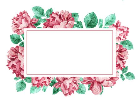 Decorative rectangular horizontal frame of pink garden roses with green leaves. Light floral bouquet for wedding invitations and romantic cards. Hand drawn elegant illustration. 스톡 콘텐츠