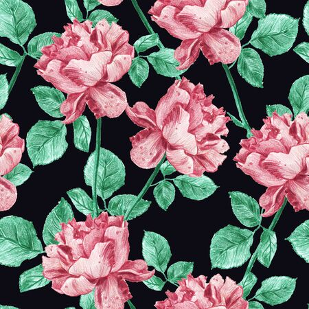 Vintage floral seamless pattern with hand drawn garden roses. Elegant pastel rose and green design with leaves and flowers on black background