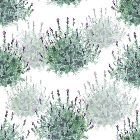 watecolor French lavender bushes delicate seamless pattern on white background