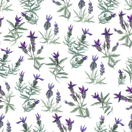 watecolor French lavender delicate seamless pattern on white background 스톡 콘텐츠