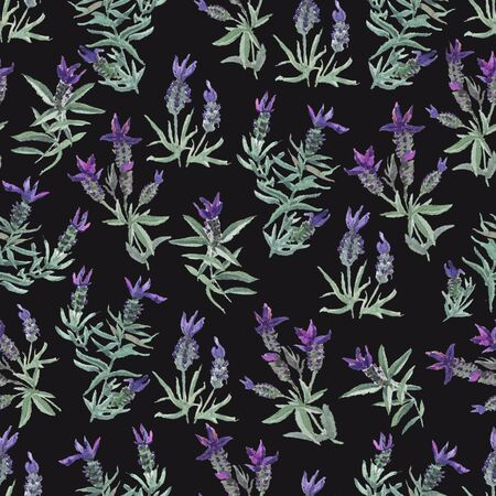 watecolor French lavender delicate seamless pattern on black background