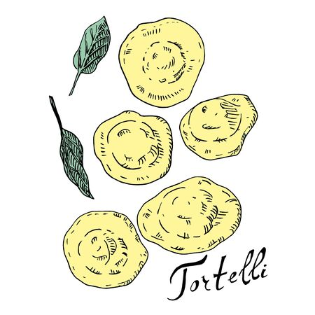 Tortelli and sage ink and color vector illustration. Traditional Italian dish. Type of pasta. For menu design icon. Isolated on white background 일러스트