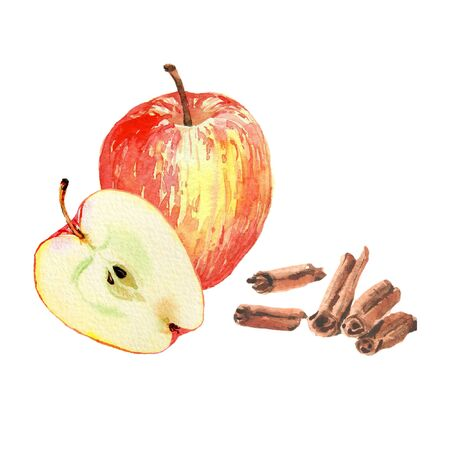Watercolor realistic illustration of red apple whole and half with cinnamon. Isolated on white background. Design for tea, ice cream, cosmetics, candy, bakery with apple filling, health care products.