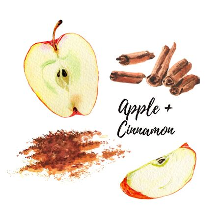 Watercolor illustration. Red apple slice, a half the cinnamon sticks and powder. Isolated on white background. Design for tea, food, cosmetics, candy, bakery with apple filling, health care products.